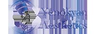 Yenokyan Aesthetics
